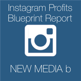 Instagram Profits Blueprint Report